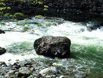 Río Imágenes de archivo libres de regalías
