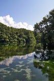 Río Fotos de archivo libres de regalías