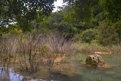 Río Imagenes de archivo