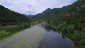 Río aéreo del tiroteo con los lirios verdes en fluir superficial del agua alrededor de la colina almacen de video