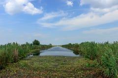 Río agradable en Hungría Fotos de archivo libres de regalías