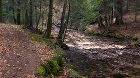 Río, agua que fluye sobre rocas y cantos rodados de la montaña almacen de metraje de vídeo