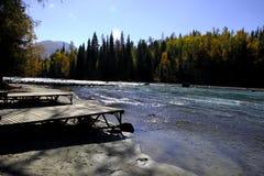 Río al lado del bosque Fotos de archivo libres de regalías