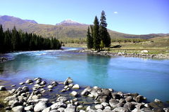 Río al lado del bosque Imagen de archivo