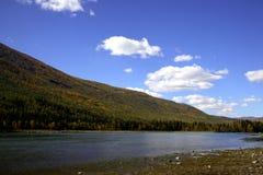 Río al lado del bosque Foto de archivo