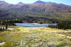 Río al lado del bosque Imagen de archivo libre de regalías
