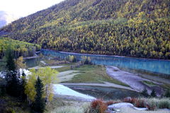 Río al lado del bosque Fotos de archivo