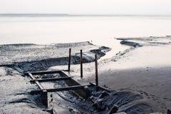 Río al océano Foto de archivo libre de regalías