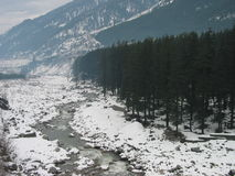 Río alineado nieve de Beas cerca de Manali la India Imagen de archivo libre de regalías