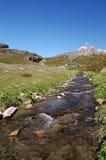 Río alpestre de la montaña fotos de archivo