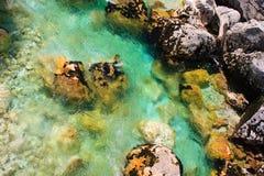 Río alpestre esmeralda foto de archivo libre de regalías