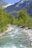 Río alpino de la montaña en valle verde de las montañas suizas Imagen de archivo libre de regalías
