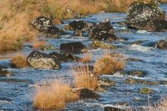 Río anaranjado Imagenes de archivo
