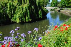 Río Anker, Tamworth Imagen de archivo libre de regalías