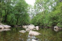 Río antiguo Fotos de archivo