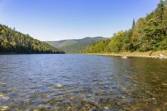 Río Anuy de la montaña fotografía de archivo