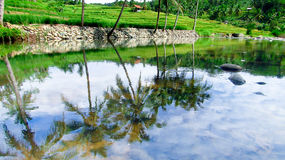 Río asombroso en Tasikmalaya, Java del oeste, Indonesia fotos de archivo