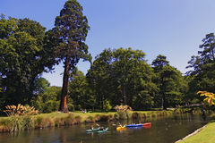 Río Avon, christchurch Imagen de archivo