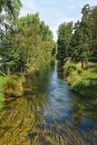 Río Avon que atraviesa el centro de Christchurch, nuevo Zeala Fotos de archivo