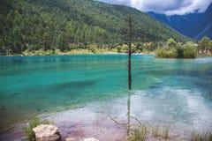 Río azul fotografía de archivo libre de regalías