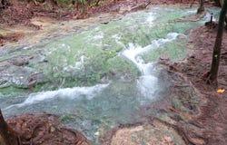 Río azul hermoso en el bosque Fotografía de archivo libre de regalías