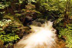 Río búlgaro del bosque fotos de archivo libres de regalías