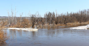 Río Barga después de abrir en Zelenogorsk Fotografía de archivo