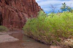 Río Barranco-bermellón del desierto-Paria de los acantilados de AZ_UT-Paria foto de archivo libre de regalías