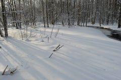 Río blanco del bosque de la costa de la nieve con las sombras de árboles en la madrugada Foto de archivo libre de regalías