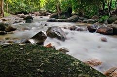 Río borroso Imagen de archivo