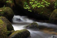 Río Bovey Imágenes de archivo libres de regalías