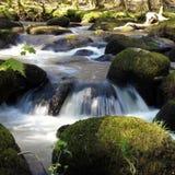 Río Bovey Fotografía de archivo