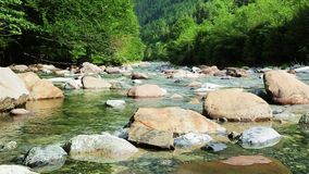 Río Bujaruelo de Rio Ara en el valle los Pirineos Huesca Aragón de Valle de Ordesa en España almacen de metraje de vídeo