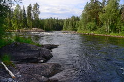 Río carelio Imagen de archivo