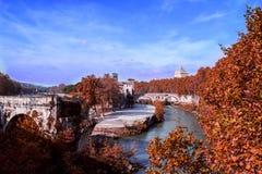Río cerca de los árboles rojos Foto de archivo