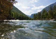 Río Chulyshman de la montaña Fotografía de archivo