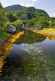 Río claro noruego Fotos de archivo libres de regalías