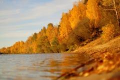Río con Autumn Trees Fotografía de archivo