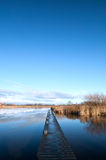 Río con el embarcadero y las cañas en la cara Foto de archivo