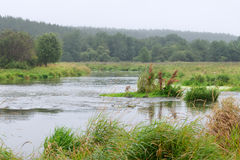 Río con la lluvia Fotos de archivo