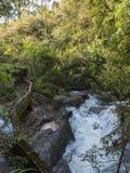 Río con las rocas y una presa en el medio de un bosque denso de árboles Foto de archivo