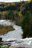 Río con los rápidos que fluyen abajo en el bosque Imagen de archivo