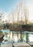 Río con un pequeño soto de árboles en el centro, composición vertical del paisaje fotos de archivo