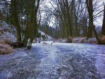 Río congelado Foto de archivo