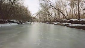 Río congelado con el árbol caido metrajes