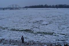 Río congelado Danubio Imagen de archivo libre de regalías