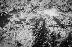 Río congelado en blanco y negro Fotografía de archivo libre de regalías