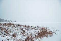 Río congelado en la nieve con vistas a la costa de las cañas Fotos de archivo
