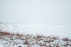 Río congelado en la nieve con vistas a la costa de las cañas Imagenes de archivo