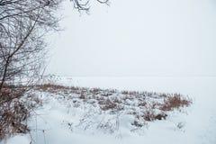 Río congelado en la nieve con vistas a la costa de las cañas Fotografía de archivo